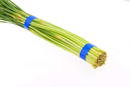 bundling: Garlic sprout isolated on a white background
