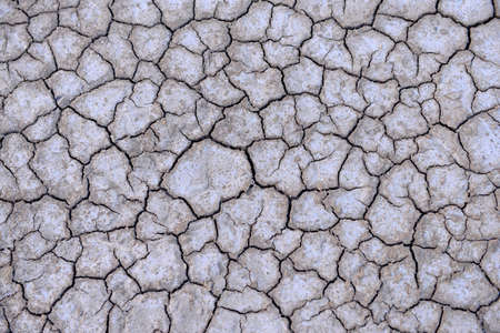 dry land: The dry land, close-up Stock Photo