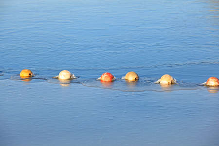buoys: buoys and net floating on the water