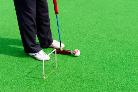 Play croquet