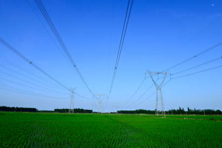 The high voltage tower is in the field