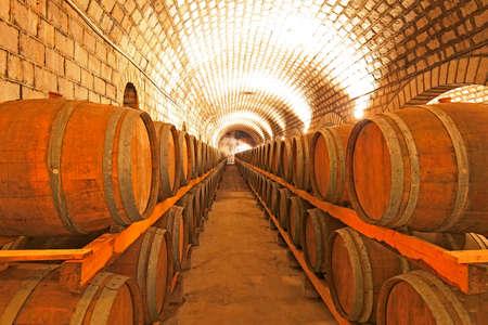 Wine cellar  Editorial