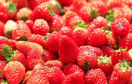 Fresh strawberries, close-up shots
