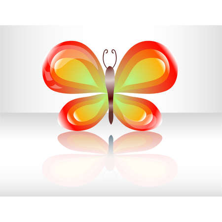 Butterfly in white background Stock Vector - 16876348