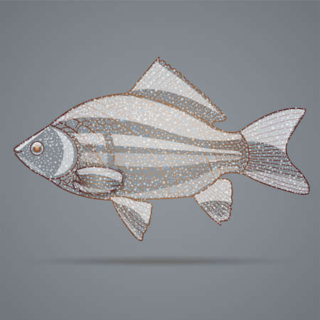 abstract fish: Abstract fish, Illustration 10 version.