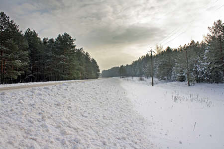 Winter road to wood with the roadside filled up by snow