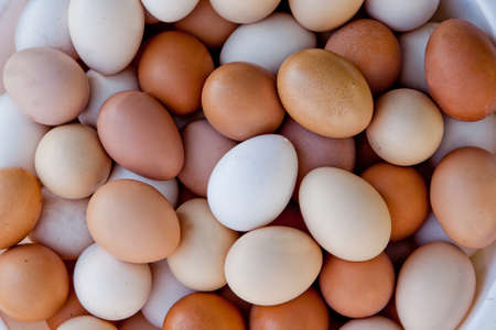 Many multicoloured eggs in a speck