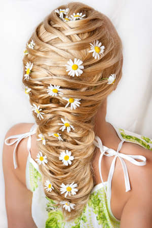 Camomiles in hair of the girl on a white background