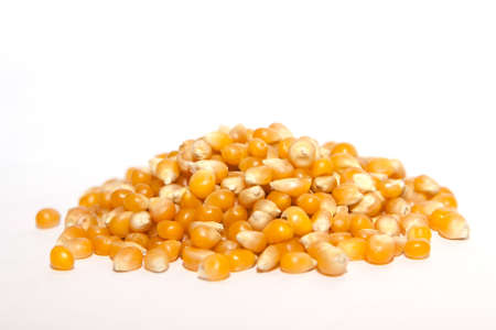 Pile dried corn isolated on white background