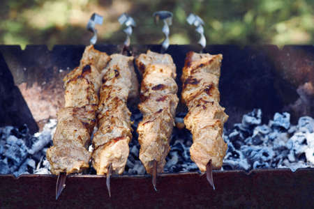 Shish kebab sur des brochettes sur le gril Banque d'images - 41329989