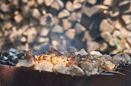 Appétissant shish kebab de viande fraîche préparée sur un charbon de bois grill, outdor Banque d'images - 41331387