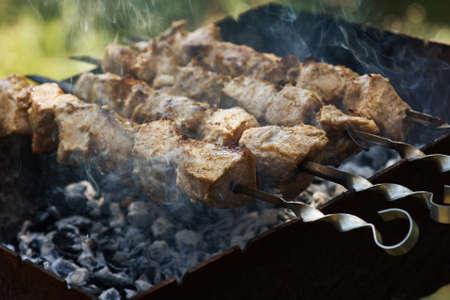 Shish kebab sur des brochettes sur le gril Banque d'images - 41640543