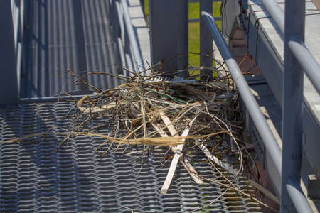 Le nid de brindilles et de fil de la zone industrielle Banque d'images - 60235603