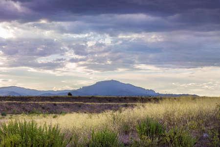 Spanish landscape in late afternoon Summer light  Banco de Imagens