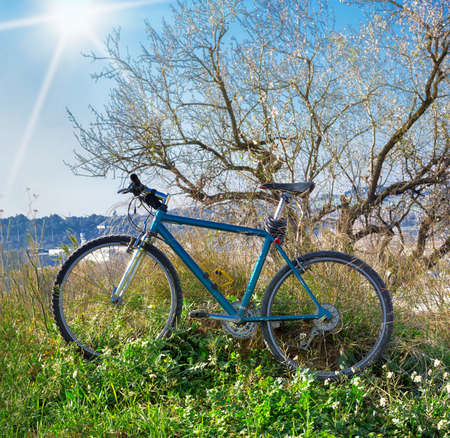 Mountain bicycle in sunlight outdoor - Nature Background Banco de Imagens