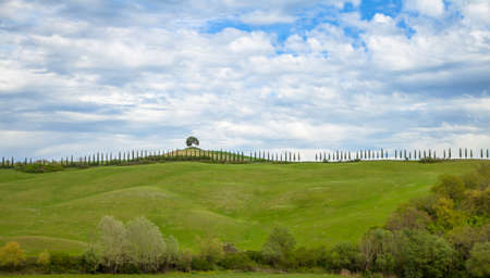 tuscan: Typical Tuscan countryside Italy