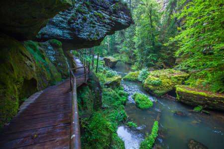 czech switzerland: Kamnitz Gorge and hiking trails in the Bohemian Switzerland in Hrensko czech republic Archivio Fotografico