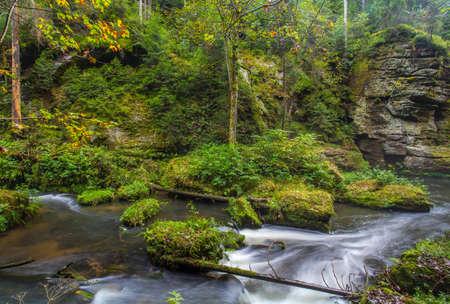 Paesaggio della gola di Kamnitz Repubblica ceca della Boemia Svizzera Hrensko