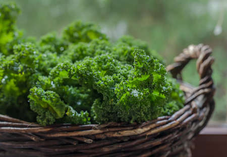 Kale green cabbage in rustic basket on Windows light
