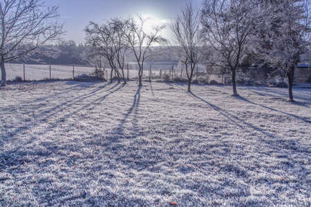 defuse: Morning frost landscape in In defuse sunlight Nature Winter Stock Photo