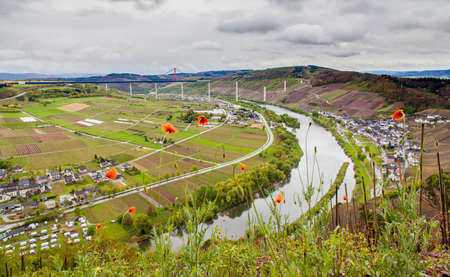 wine road: Moselle valley Landscape  and view on High Moselle Bridge construction side Rheinland Pfalz Germany at Spring