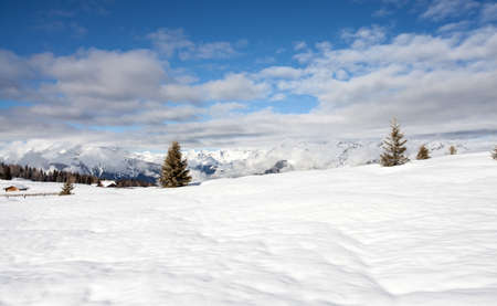 snow mountains landscape and blue sky in south tirol Italy  winter season Stock Photo