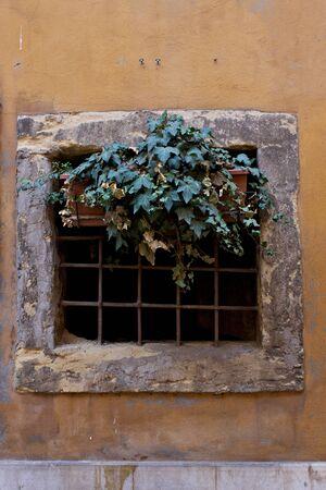 Verona  IT  - Typical Italia Renaissence Window, decoration