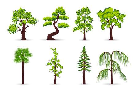 hemlock: Iconos de árbol Vectores