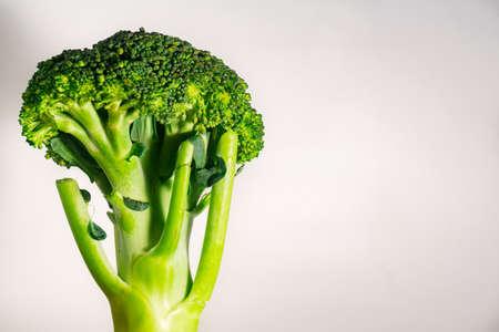 brocolli: Green Organic Brocolli vegetable on left side on white background