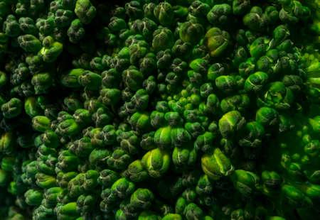 brocolli: Close up Macro Texture of Natural Organic Brocolli Upper Part