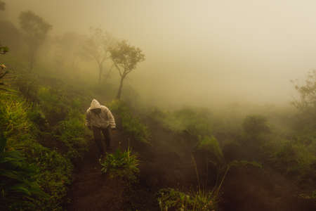 unrecognisable people: People Travel Hiking up to Mountain on Misty Weather on Mount Merbabu Indonesia