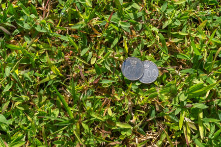 Two Thousand Rupiah coin money on green grass