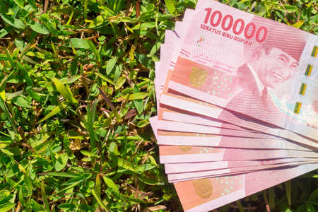 Hundred thousand rupiah paper money on green grass 스톡 콘텐츠