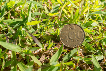 Single five hundred Rupiah coin money on green grass