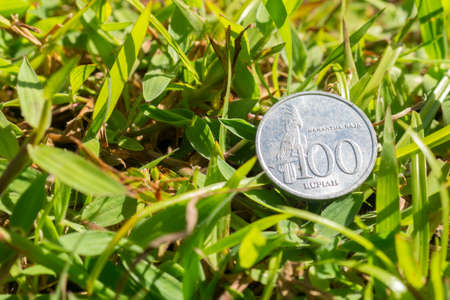 Single hundred Rupiah coin money on green grass Stock Photo