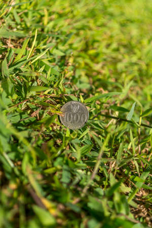 Thousand Rupiah coin money on green grass Stock Photo