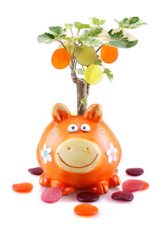 Orange piggy bank with money tree on a white background photo