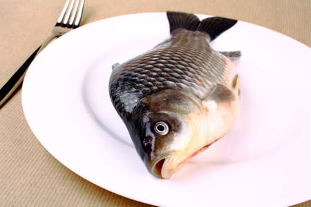 Fresh fish carp on a white plate closeup photo