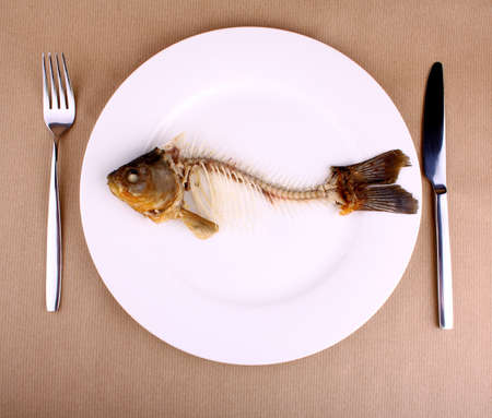 Abstract, complete bone of whole fish on plate