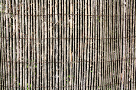 wicker work: Gray wattle, the old fence as background, close up Stock Photo
