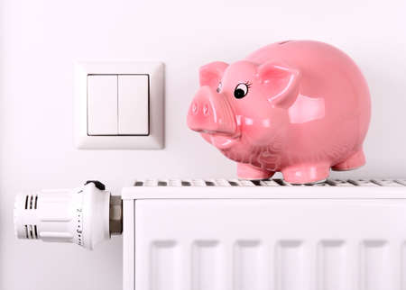 thrift box: Pink piggy bank jump, saving electricity and heating costs, close up