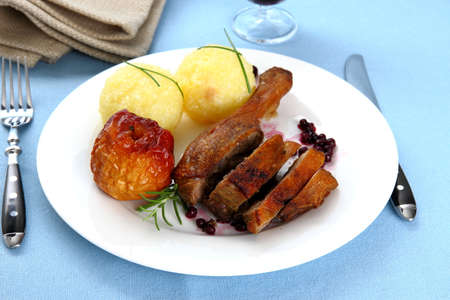 Duck leg with potato dumplings, red apple and cranberries, top view photo