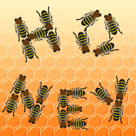 Fleet bees as text on honeycomb, top view, vector Vector
