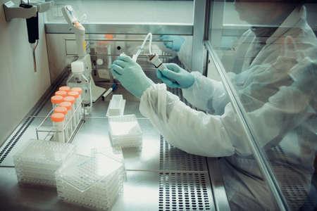 in lab: T�cnico de laboratorio adultos trabajando con pipeta de m�ltiples pocillos, enfoque suave Foto de archivo