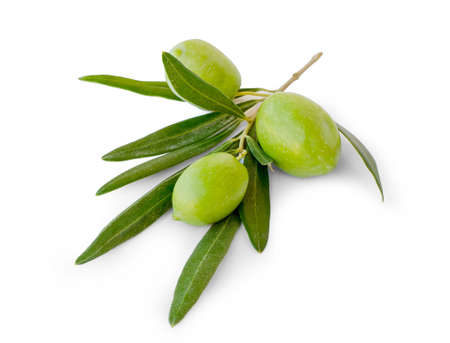 olive green: Three olives with leaves on white background Stock Photo