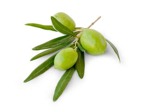 hoja de olivo: Tres aceitunas con hojas sobre fondo blanco