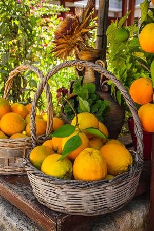 basket: Full basket with ripe oranges, Crete food