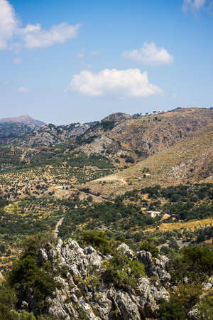 judean hills: Mediterranean mountain landscape in Greece with olive tree Stock Photo