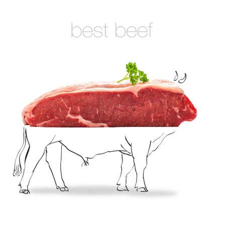 rump steak: Raw rump steak with bull sketch isolated on white Stock Photo