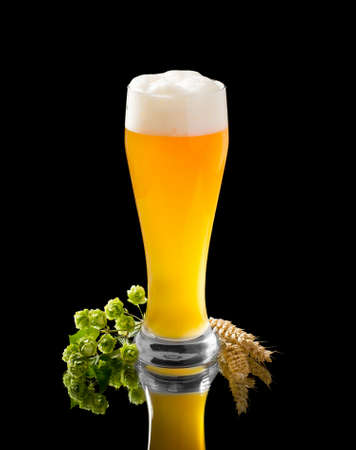 Natural turbid yeast wheat beer in glass with hop and wheat spike on black 스톡 콘텐츠